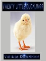 Twenty Little Ducklings