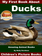 My First Book About Ducks