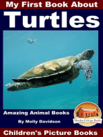 My First Book About Turtles