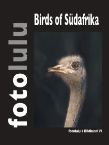 Birds of Südafrika: fotolulus Bildband VI