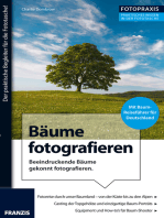 Foto Praxis Bäume fotografieren