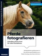 Foto Praxis Pferde fotografieren