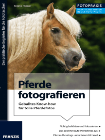 Foto Praxis Pferde fotografieren: Geballtes Know-how für das perfekte Pferde-Shooting