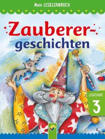 Zauberergeschichten: Mein Leselernbuch: Lesestufe 3