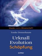 Urknall, Evolution - Schöpfung