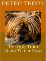 The Ugly Truth About Terrier Dogs