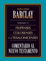 Comentario al Nuevo Testamento Vol. 11