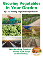 Growing Vegetables in Your Garden