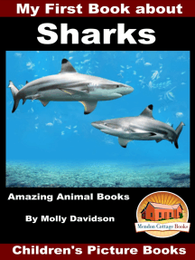 My First Book about Sharks: Amazing Animal Books - Children's Picture Books