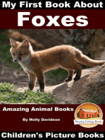 My First Book about Foxes