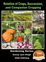 Rotation of Crops, Succession, and Companion Cropping
