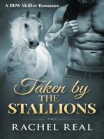 Taken by the Stallions (Blackwood Stallions, #3)