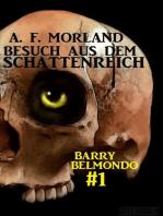 Besuch aus dem Schattenreich (Barry Belmondo, #1)