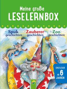 Meine große Leselernbox: Spukgeschichten, Zauberergeschichten, Zoogeschichten: Mit 3 Lesestufen