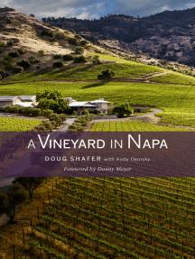 A Vineyard in Napa