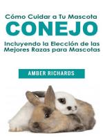 Cómo Cuidar a Tu Mascota Conejo