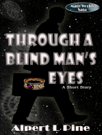 Through a Blind Man's Eyes