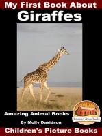 My First Book about Giraffes