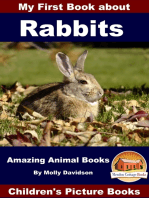 My First Book about Rabbits