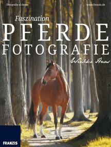 Faszination Pferdefotografie: So machen Sie die Liebe zum Tier für andere Menschen sichtbar