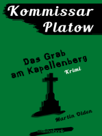 Kommissar Platow, Band 2