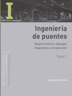 Ingeniería de puentes: Tomo I: Reseña histórica, tipología, diagnóstico y recuperación. Tomo II: Colapso, inspección especial, socavación, vulnerabilidad sísmica y capacidad de carga