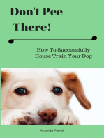 Don't Pee There! How To Successfully House Train Your Dog