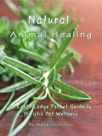Natural Animal Healing
