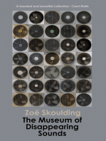 The Museum of Disappearing Sounds