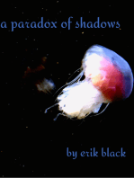 A Paradox of Shadows