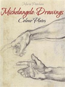 Michelangelo: Drawings Colour Plates