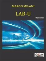 Lab-U L'accesso