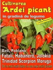 Cultivarea ardei picant in gradină de legume