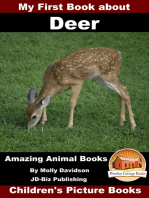 My First Book about Deer