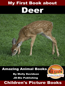 My First Book about Deer: Amazing Animal Books - Children's Picture Books