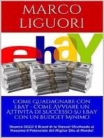 Come Guadagnare con Ebay - Come Avviare un'Attività Online con un Budget Ridotto