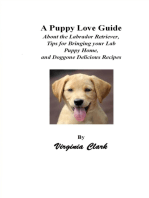 A Puppy Love Guide; About the Labrador Retriever, Tips for Bringing Your Lab Puppy Home, and Doggone Delicious Recipes