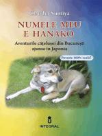 Numele meu este Hanako. Aventurile cățelușei din București ajunse în Japonia