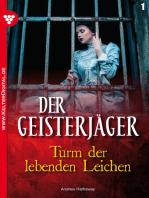 Der Geisterjäger 1 – Gruselroman