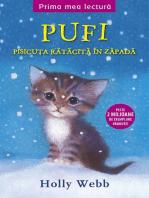 Pufi. Pisicuța rătăcită în zăpadă