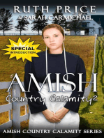 An Amish Country Calamity 2