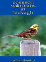 Wild Birds in Lackagh