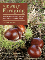Midwest Foraging