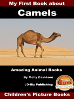 My First Book about Camels