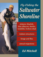 Fly-Fishing the Saltwater Shoreline