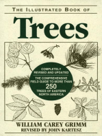 Illustrated Book of Trees