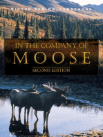 In the Company of Moose