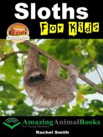 Sloths For Kids