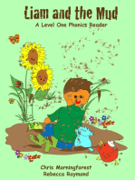Liam and the Mud - A Level One Phonics Reader