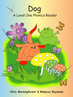 Dog - A Level One Phonics Reader